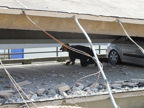 A member of the USAID Disaster Assistance Response Team (DART) crawling in between two layers of the Smiths City car park.